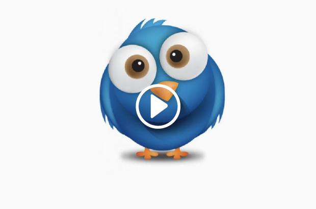 Toyo Publicidad Social Media